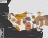 Carte de l'Afrique de l'Ouest vers 1860 apr. J.-C., qui montre l'imamat du Fouta-Djalon, l'Empire toucouleur, l'imamat du Fouta-Toro, le Sénégal français, les royaumes de Djolof, Cayor, Baol, Sine, Saloum et Kaabu, l'Empire wassoulou, le royaume de Koya, le Protectorat britannique, la République du Liberia, le royaume songhaï de Dendi et le sultanat de l'Aïr, les royaumes Mossis, l'empire Kong, l'empire de Kanem-Bornou, l'empire Sokoto, les royaumes du Bénin, d'Oyo, d'Igala, d'Ijebu, de Nri et du Borgou, la Confédération d'Aro, le royaume de Dahomey, la Côte-de-l'Or Néerlandaise et l'empire Ashanti.