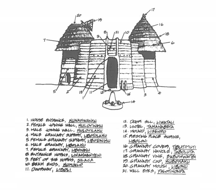 Diagram of the front view of a Batammaliba Tata Somba or takyenta house showing the different parts of its architecture, from the doorway to the granaries, to the male and female joining walls.