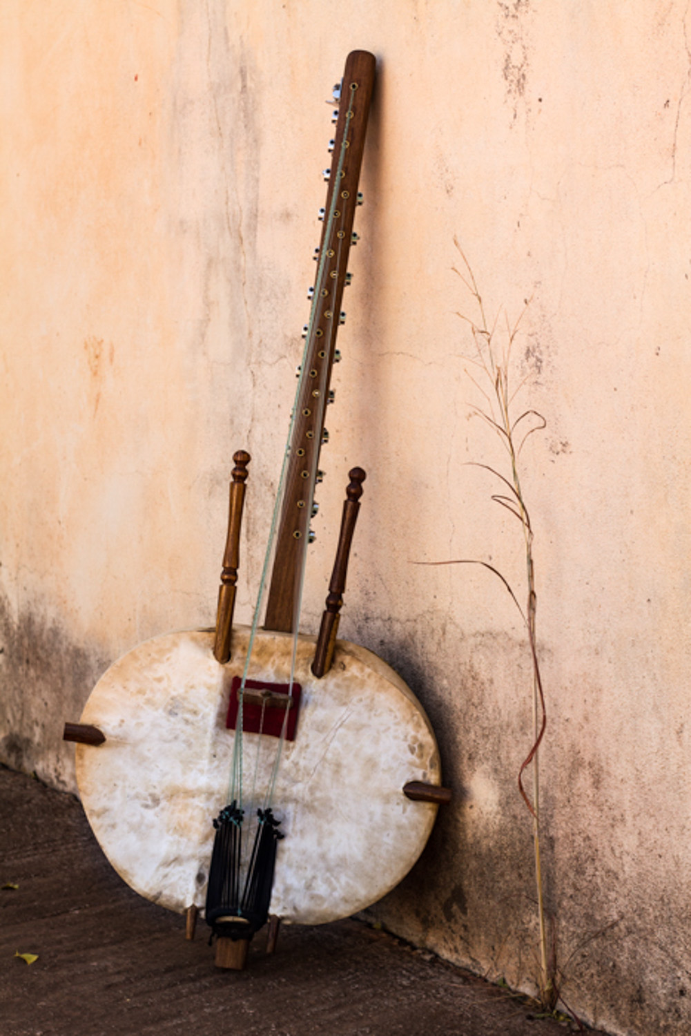 Photograph of a Mandé Kora, a string West African instrument made out of a calabash.